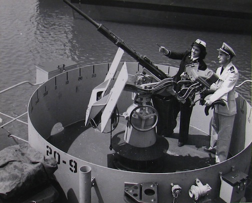 WAVE checking 20mm gun.