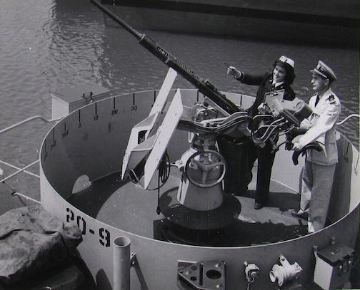 WAVE checking 20mm gun.
